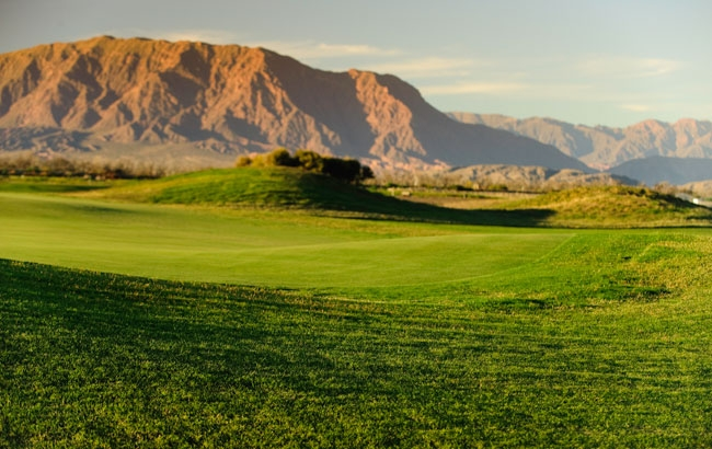 Estancia Cafayate Wine Golf